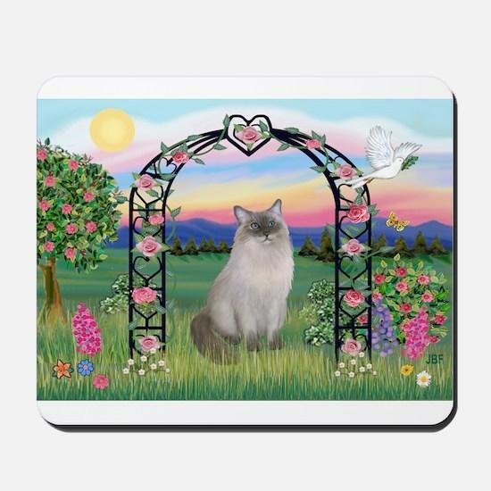 Blossoms / Ragdoll Mousepad