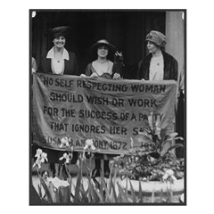 No Self-Respecting Woman . .Alice Paul Poster