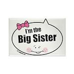 Big Sister Rectangle Magnet (10 pack)