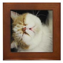 Hart Smoosh Framed Tile