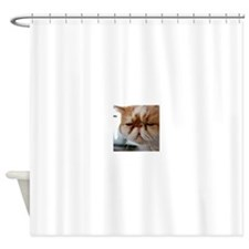 Smoosh In The Shower Curtain