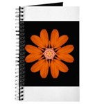 Orange Zinnia I Journal