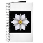 Daffodil II Journal