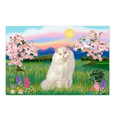 Blossoms / White Persian Postcards (Package of 8)
