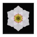 Daffodil I Tile Coaster