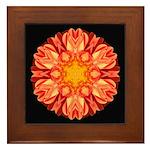 Orange Dahlia II Framed Tile
