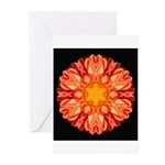 Orange Dahlia II Greeting Cards (Pk of 10)