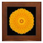 Nasturtium I Framed Tile