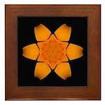 Orange Daylily I Framed Tile