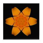 Orange Daylily I Tile Coaster