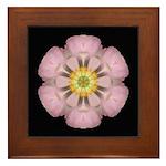 Lavender Pink Peony I Framed Tile