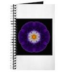 Iris II Journal
