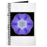 Iris I Journal