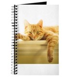 Tabby cat Journals & Spiral Notebooks