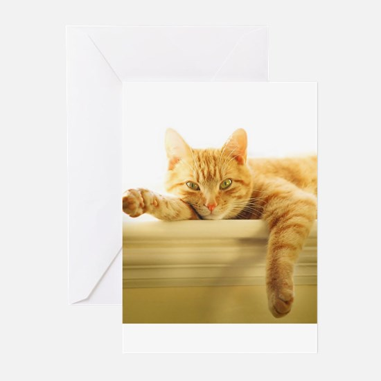 361701_1535 Greeting Cards