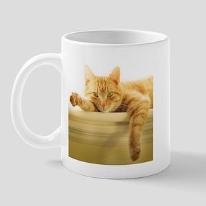 361701_1535 Mugs