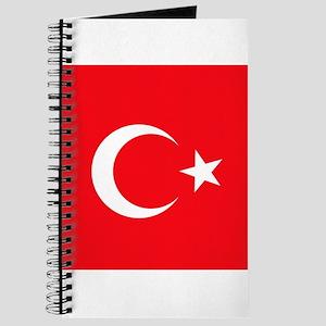 Turk Journal