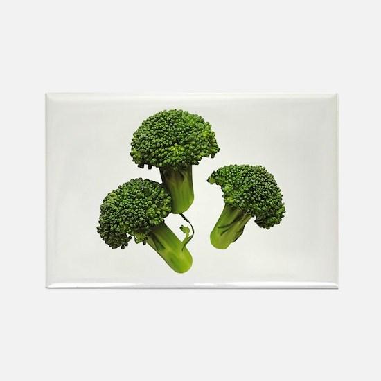 Broccoli Rectangle Magnet