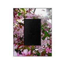 Spring Pink Flowers Picture Frame