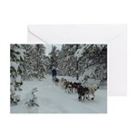 White Christmas Greeting Cards (Pk of 10)