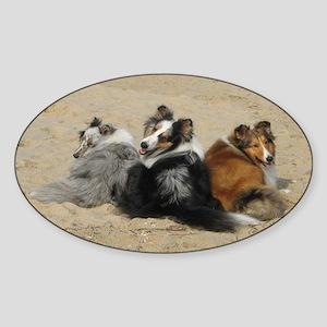 beach pups Oval Sticker