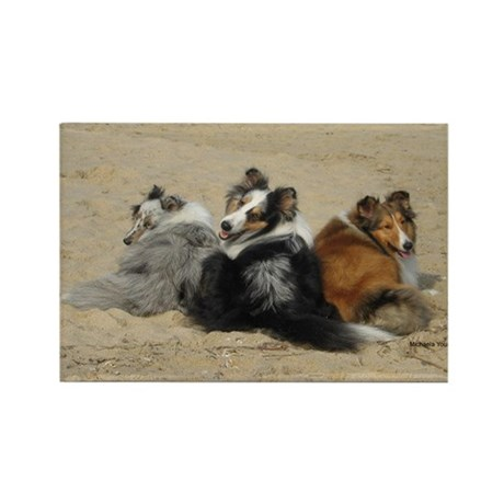 beach pups Rectangle Magnet
