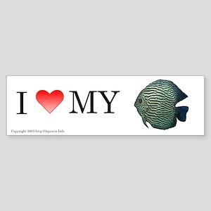 I Love My Torquise Discus Bumper Sticker