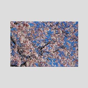 Japanese Cherry Blossom Rectangle Magnet (100 pack