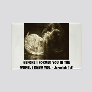 I FORMED YOU IN THE WOMB Pro-life Rectangle Magnet