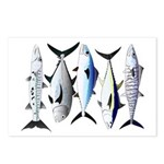 South Pacific Speedy Fishes Postcards (Package of