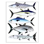 South Pacific Speedy Fishes Posters