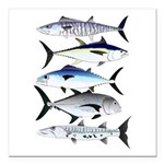 South Pacific Speedy Fishes Square Car Magnet 3