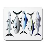 South Pacific Speedy Fishes Mousepad