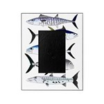 South Pacific Speedy Fishes Picture Frame