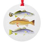 3 West Atlantic Ocean Drum Fishes Ornament