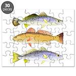 3 West Atlantic Ocean Drum Fishes Puzzle