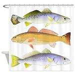 3 West Atlantic Ocean Drum Fishes Shower Curtain