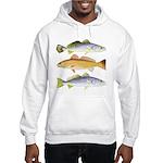 3 West Atlantic Ocean Drum Fishes Sweatshirt