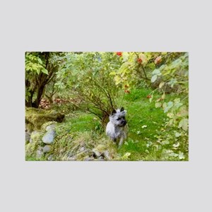 Cairn Terrier Hunting Magnets