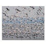 Snow Goose Mass Ascent Small Poster