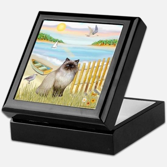 Rowboat / Himalayan Cat Keepsake Box