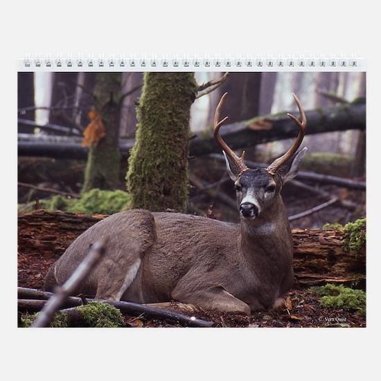 Blacktail Deer Wall Calendar