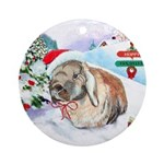 Giddeon's Winter Ornament (Round)
