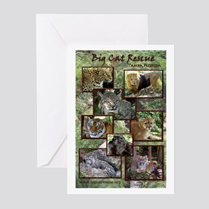 Big Cat Rescue Greeting Cards (Pk of 10)