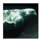 Canada Souvenir Beluga Whale Tile Coaster