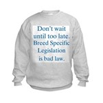 Bad Law Kids Sweatshirt