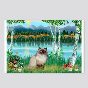 Birches / Himalayan Cat Postcards (Package of 8)