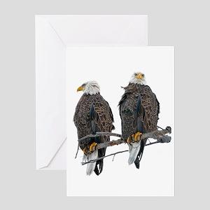 TWIN EAGLES Greeting Card