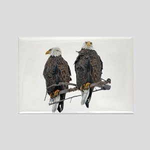 TWIN EAGLES Rectangle Magnet