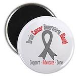 Brain Cancer Awareness Magnet
